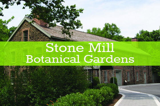 Stone Mill Botanical Gardens - A Perfect Blend Entertainment