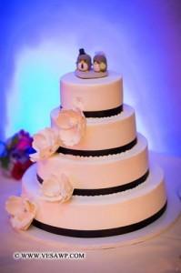 Patriot Hills- Wedding Cake