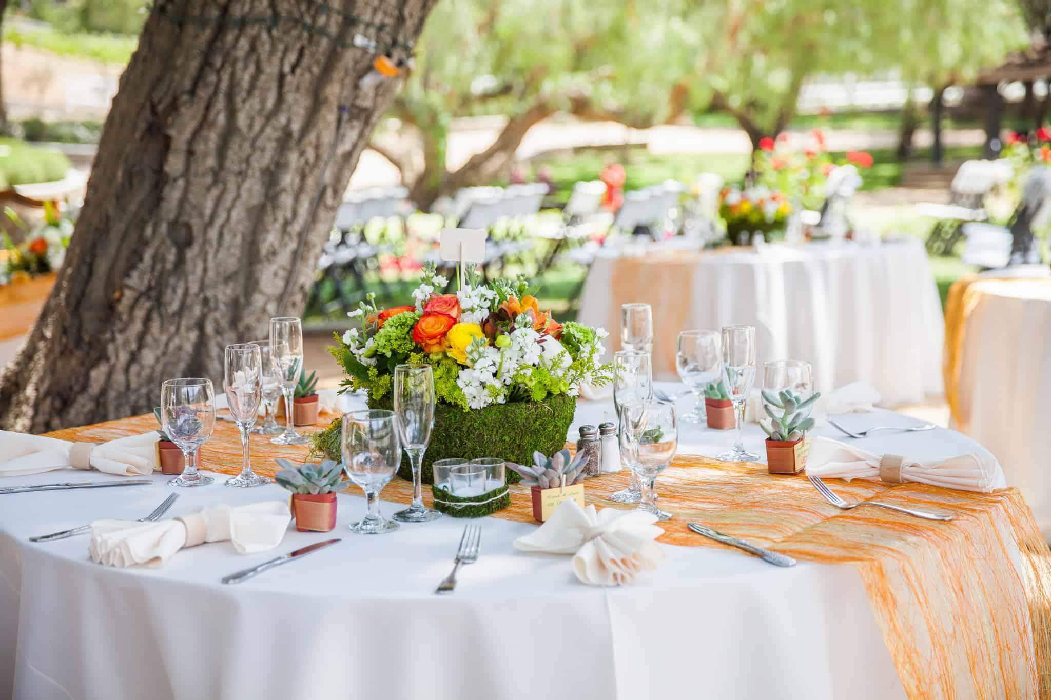 Outdoor Reception Outdoor Wedding Etiquette Hudson Valley Dj